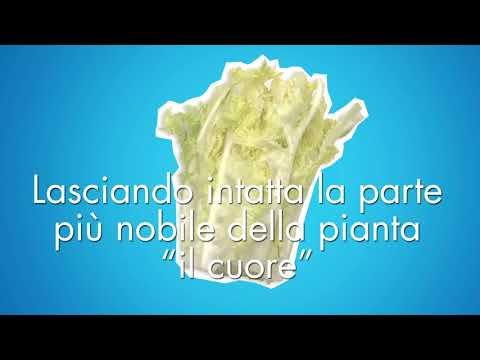 Come Nasce una MAGNAM SALAD originale (видео)