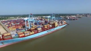 APM Terminals Mobile Overview