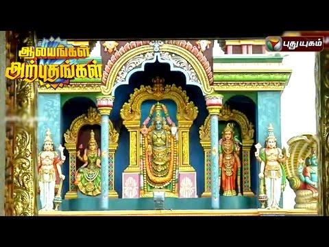 Ambur-Srinivasa-Perumal-Temple-Aalayangal-Arputhangal-20-06-2016-Puthuyugam-TV