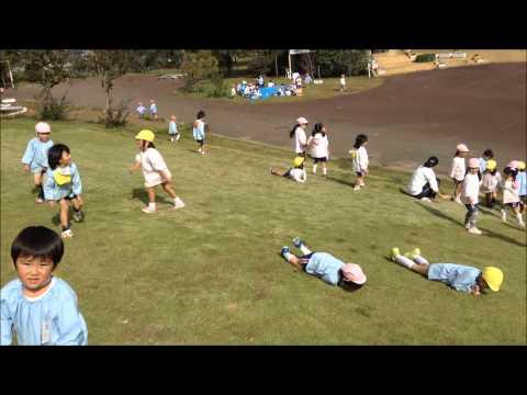 秋の遠足(茨城県フラワーパーク) 笠間市 ともべ幼稚園 園