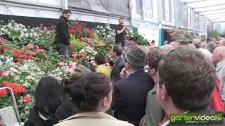 #1266 Chelsea 2013 - Pflanzenmarkt und Ausverkauf an der Chelsea Flower Show