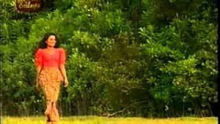 Video Sal sapu mal - Sisira Senarathna MP3, 3GP, MP4, WEBM, AVI, FLV November 2017