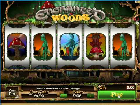 Enchanted Woods - Game In Play
