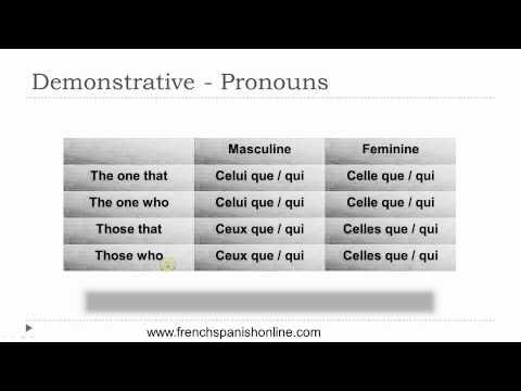 Demonstrativpronomen im Französischen