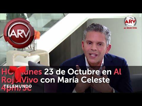 Hoy lunes exclusiva con Eduardo Yáñez en Al Rojo Vivo | Al Rojo Vivo | Telemundo