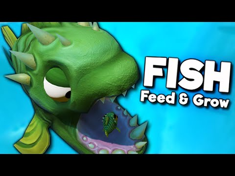 Video feed and grow the biggest fish in the sea early for Feed and grow fish the game