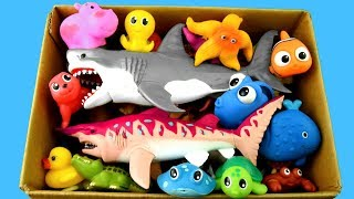 Video Learn Sea Animal Names and Zoo Animals Names Education Video Toys For Kids MP3, 3GP, MP4, WEBM, AVI, FLV September 2018