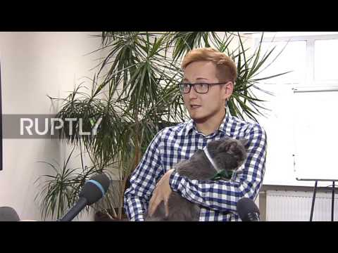 Russia: Meet Barsik The Cat – The Latest Employee Of A Perm Construction Company