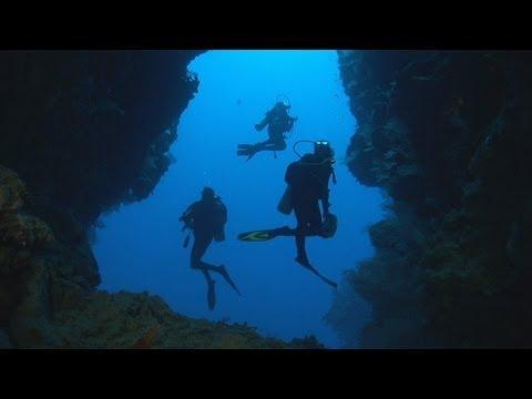 Mondo sommerso : Fiji e Tonga