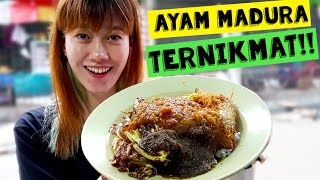 Video AYAM MADURA TERNIKMAT MP3, 3GP, MP4, WEBM, AVI, FLV November 2018