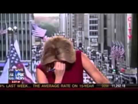 Megyn Kelly farting live on tv (MUST SEE)