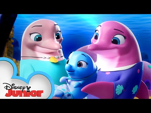 Pip and Freddy's Ocean Adventure 🌊 | T.O.T.S. | Disney Junior