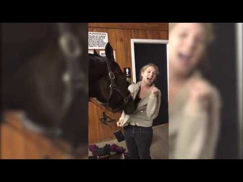 Horse Plays with Girl's Hoodie