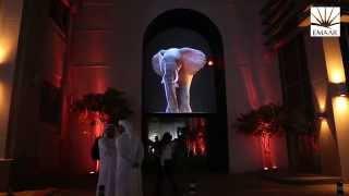 Best of The Dubai Festival of Lights 2014