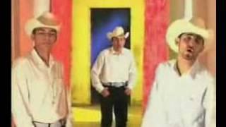 Porque sin ti Los Diamantes de Sinaloa
