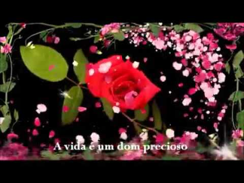 Imagens com mensagens - Linda Mensagem Com Umas Lindas Imagens de Flores