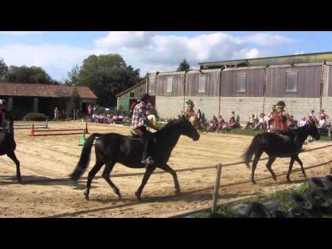Journée du Cheval 2016