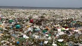 To nie wysypisko śmieci. To ocean.  Przerażające? Udostępnij. Uświadom innych.