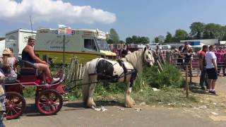 Appleby Horse Fair - Appleby Cumbria