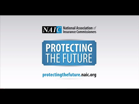 NAIC Leadership Discusses Protecting the Future