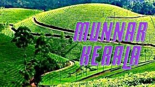 Munnar India  City pictures : Munnar Beautiful Tea Gardens Kerala India *HD* മുന്നാർ