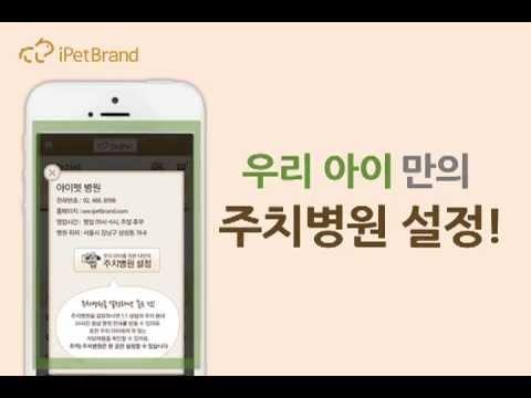 Video of 닥터 아이펫 [반려동물 1:1 모바일 동물병원]