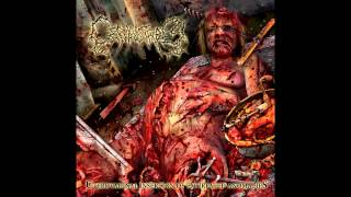 Top 5 Brutal Death Metal Bands