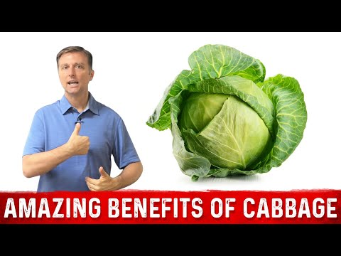 The Amazing Benefits of Cabbage