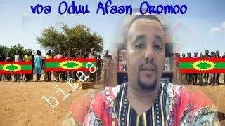 Voa Afaan Oromoo 19 Hagayya 2017.