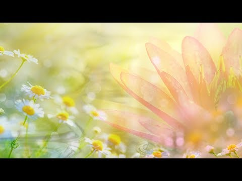 Peaceful music, Relaxing music, Spa music
