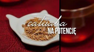 Catuaba. Afrodyzjak i lek na potencję Portal i sklep z herbatą http://www.czajnikowy.pl Blog: http://www.czajnikowy.pl/herbata-na-potencje-catuaba-dzialanie/...