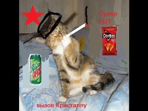 Супер кот кликер. Вызов для CRYSTAL (whoyourenemy) 2часть