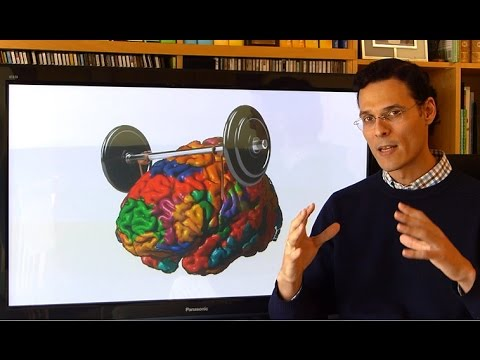 Watch video Descubriendo el cerebro
