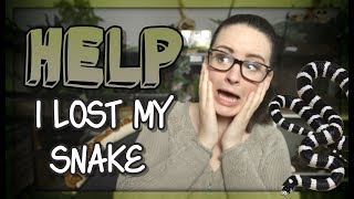 LOST MY SNAKE!?!! (What to do) by Jossers Jungle