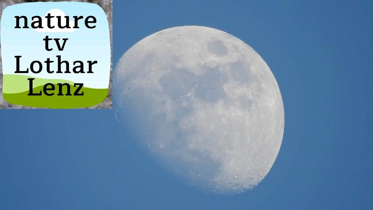 Nikon coolpix P900 83x optical zoom world record – video test on moon
