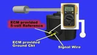 10. Fuel Tank Level Sensor