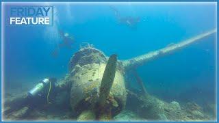 Video 10 Mistakes That Newbie Divers Make MP3, 3GP, MP4, WEBM, AVI, FLV Juni 2019
