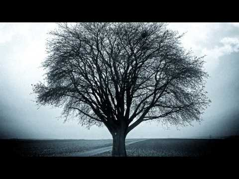 A Leafless Tree (Sad Piano Instrumental)