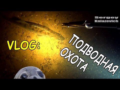 VLOG: подводная охота до запрета 2016 \ Киев ( Сергей Князевич )