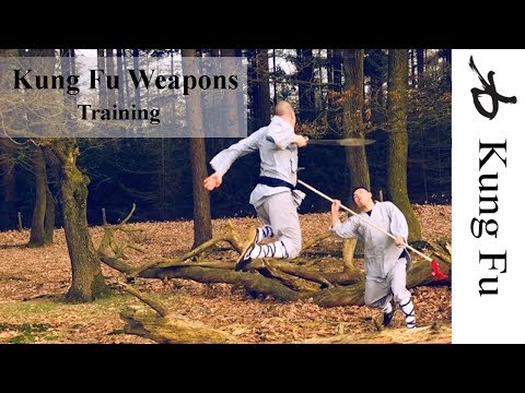 Spear Pudao Straight sword / martial arts weapons (видео)