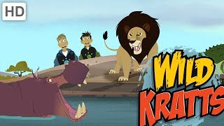 Video Wild Kratts - Top African Wildlife MP3, 3GP, MP4, WEBM, AVI, FLV Juli 2019