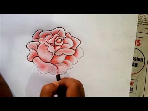(How to draw a rose simple step by step for kids. - Duration: 64 seconds.)