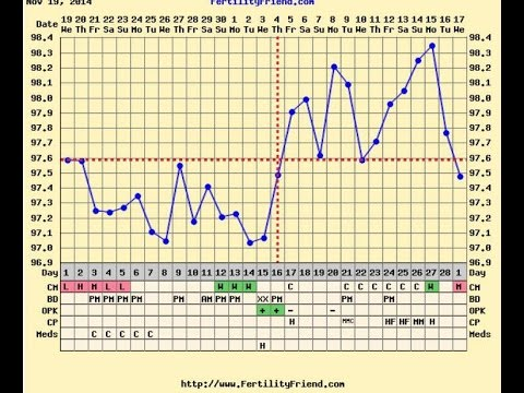 HOW TO CHART OVULATION || Fertility Friend