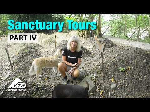 Sanctuary tour part IV