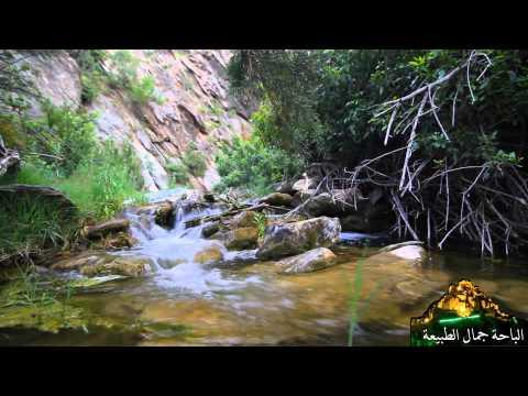 الباحة جمال الطبيعة