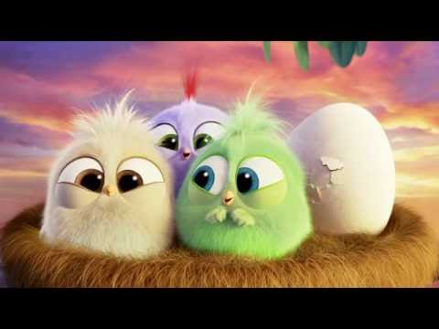 Angry Birds Angry Birds (Viral Video 'The Hatchlings Thank You')