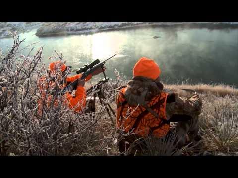 Montana Trophy Mule Deer Hunt