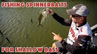 Video Fishing for Bass in Shallow Cover with Spinnerbaits MP3, 3GP, MP4, WEBM, AVI, FLV Agustus 2018