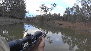 Video A day hunting in my crocs MP3, 3GP, MP4, WEBM, AVI, FLV November 2017