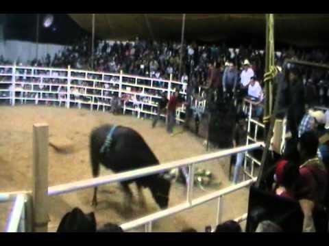 Rancho El Guamuchil en la Feria de la Candelaria en Juliantla 3 Febrero 2013.